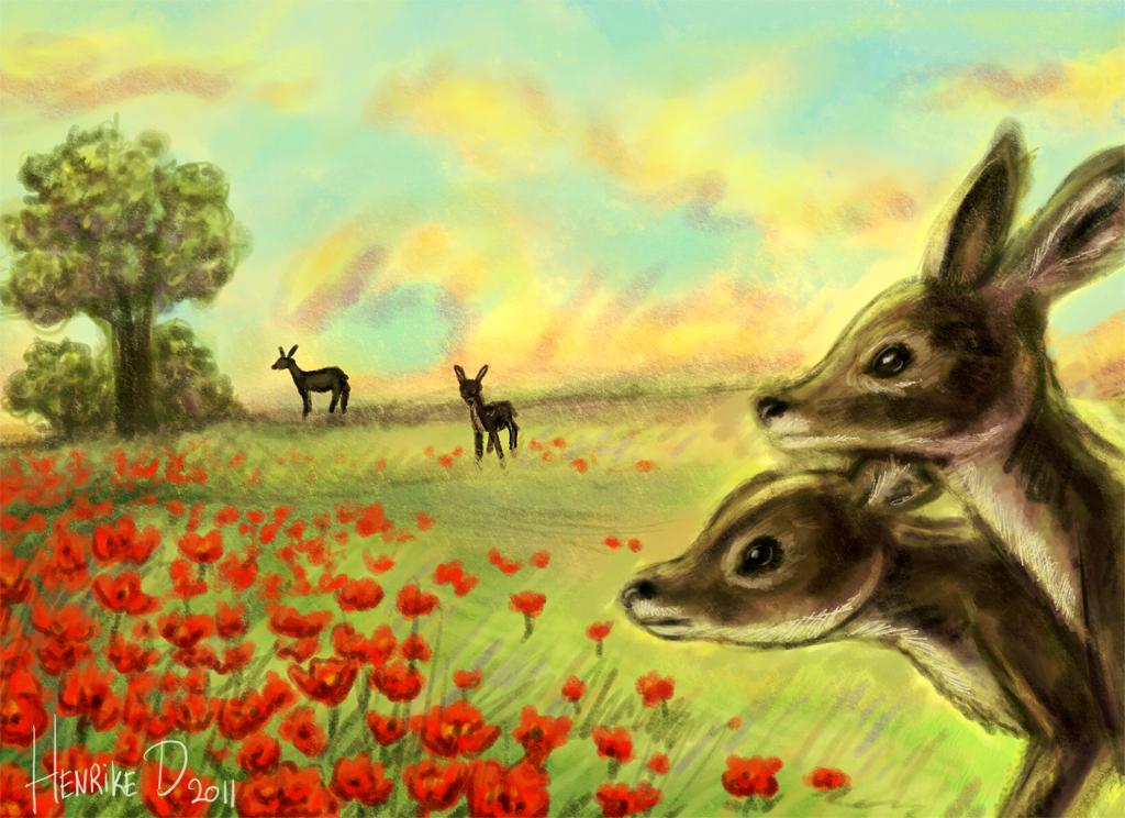 herten in het open veld