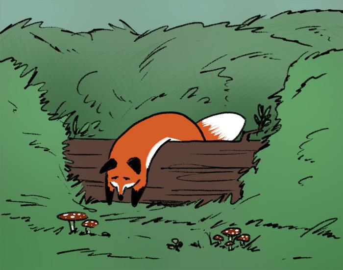 fox image - sick